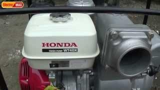 видео Мотопомпа Honda WH 20 XT
