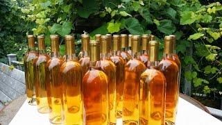 Ginger Rhubarb Wine!