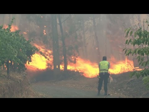 Portugal forest fires force 10 villages to evacuate