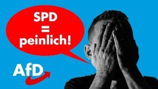 Voll blamiert! AfD-Politikerin führt SPD-Schreihals auf offener Straße vor!