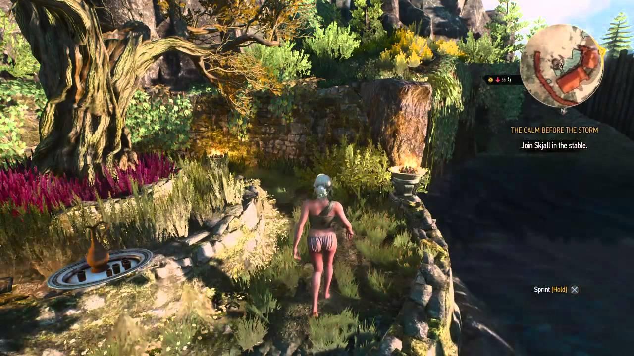 The Witcher 3: Wild Hunt   sauna / trouble