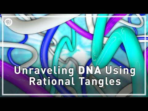 Unraveling DNA With Rational Tangles | Infinite Series