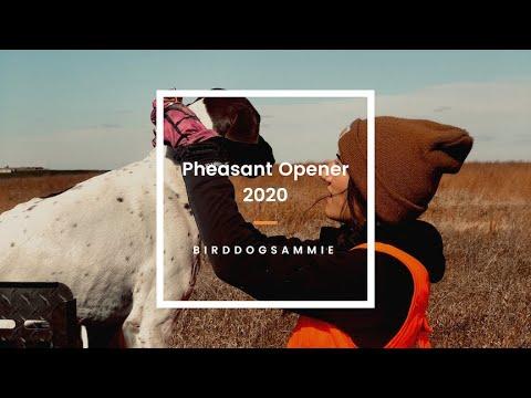 Pheasant Hunting|South Dakota|Opening Day 2020