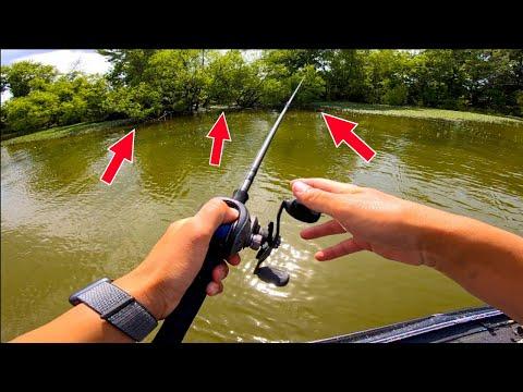 Catching GIANT BASS In A MUDDY CREEK! ( $20,000 Fishing Tournament )