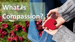 What is true compassion? | Meditation