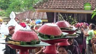 Tradisi Umat Hindu Dan Muslim Di Lombok Untuk Saling Bersilaturahmi Dalam Budaya Perang Topat
