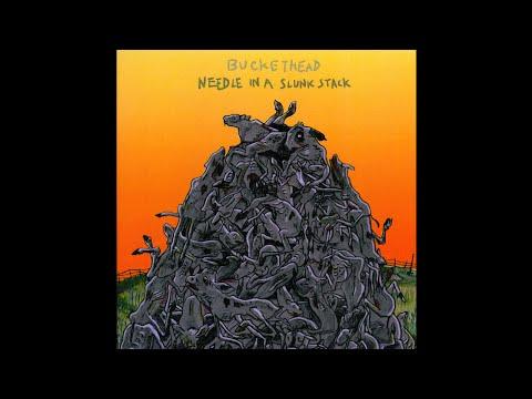 Buckethead - Needle In A Slunk Stack