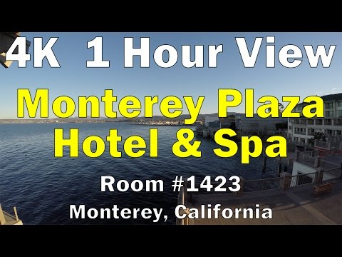 Monterey Plaza Hotel and Spa - Room #1423 - 1 Hour View