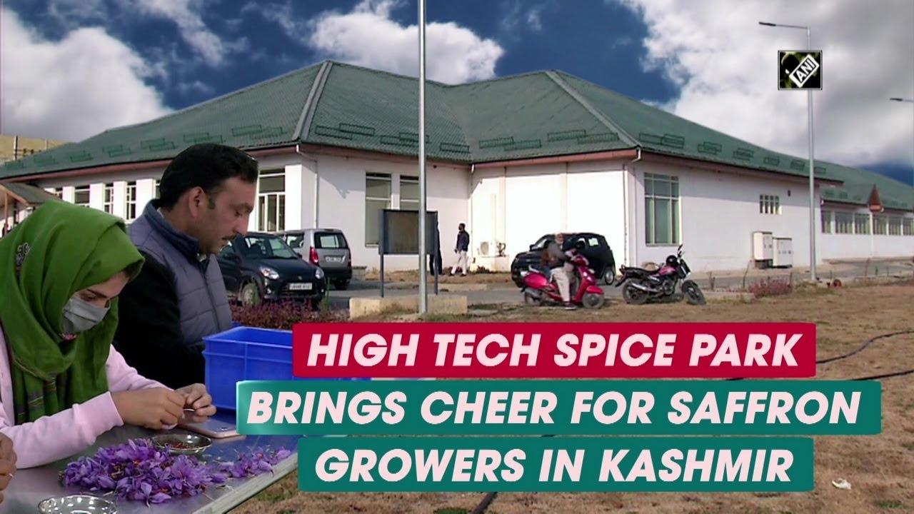 High tech Spice Park brings cheer for saffron growers in Kashmir