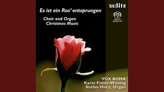 Weihnachtsoratorium BWV 248: Ich will dich mit Fleiß bewahren