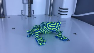3D Printing #7 - Dual Extrusion / Color Frog - Ultimaker 3 Test Print - PLA