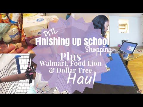 DITL Mom Vlog | Walmart, FoodLion, & Dollar Tree Haul  | LifeAsBrittany