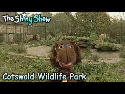 The Shiny Show | Cotswold Wildlife Park | S2E35