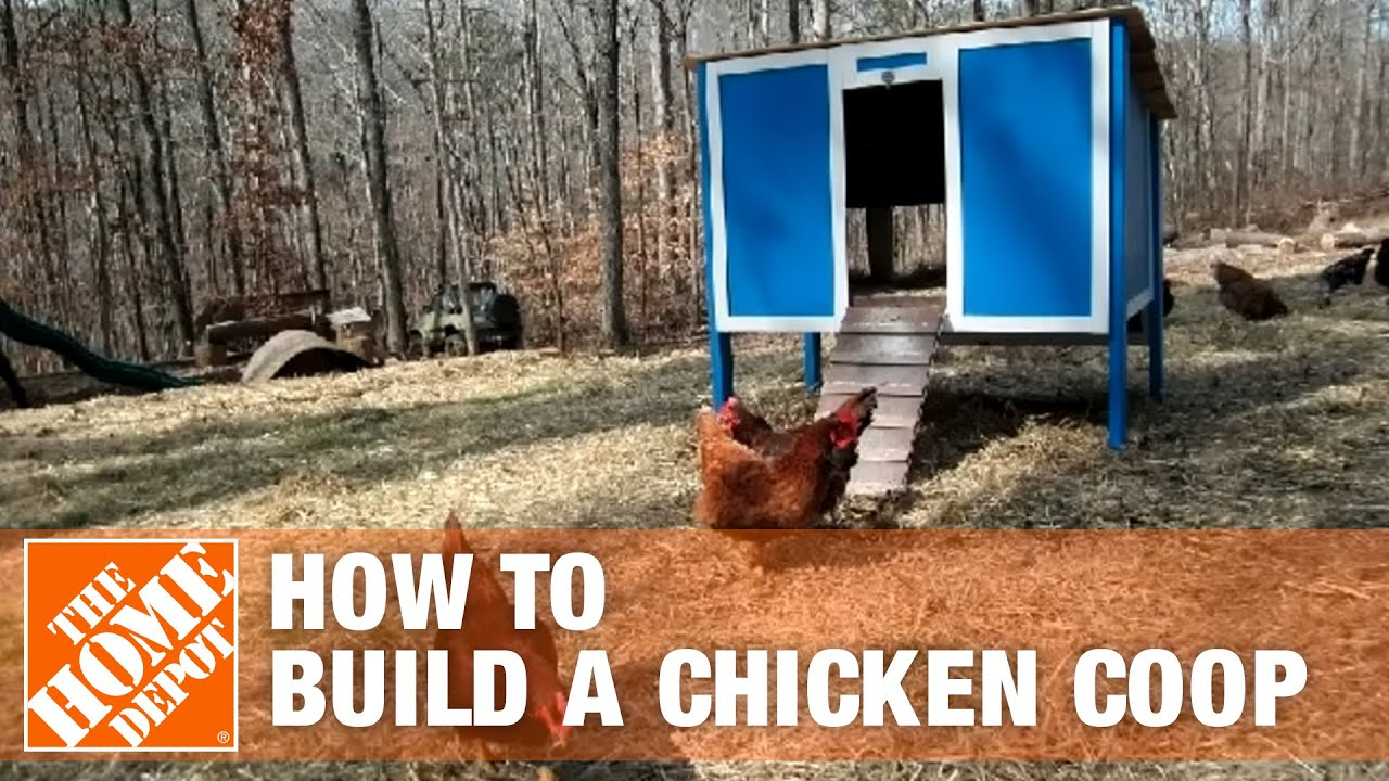 How to build a chicken coop part 1 the home depot youtube for A frame chicken house