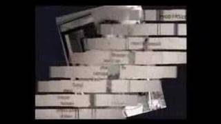 Gelu Vlasin - moral insanity