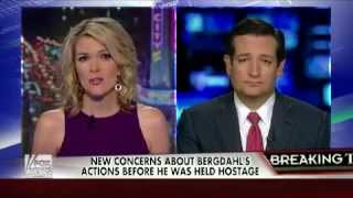 Cruz Rips Senate Dems For Proposed Constitutional Amendment