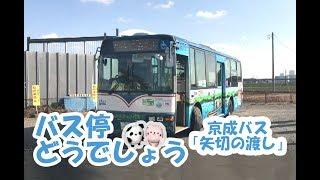 【のりもの】バス停どうでしょう!京成バス「矢切の渡し」 thumbnail