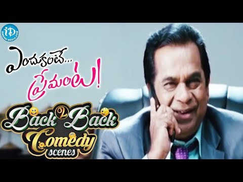 Endukante Premanta Movie Back to Back Comedy Scenes || Raghu Babu, Krishna Bhagavan