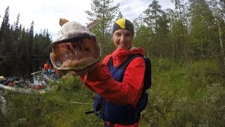 Походный рецепт копчения рыбы без коптилки и Григория Соколова.(Альфа и омега похода, да и всего туризма - это уйти подальше и там что-то вкусное сожрать (или выпить, но это..., 2016-09-21T16:00:31.000Z)