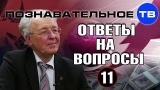 Ответы на вопросы 11 (Познавательное ТВ, Валентин Катасонов)
