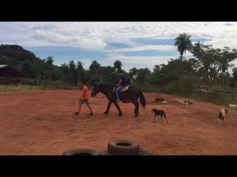 Farm Stay Paraguay | South America Inside