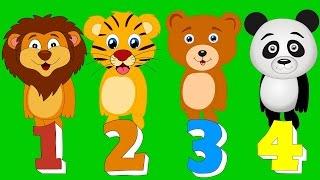 Hayvanları Sayıyoruz Şarkısı – Sayıları Öğrenelim | Okul Öncesi Çocuk Şarkıları