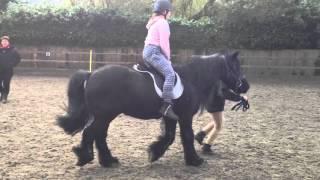 My horse riding lesson at monach farm
