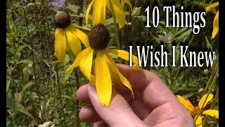 10 Things I WISH I KNEW When Starting To Forage Wild Edibles & Medicinal Plants