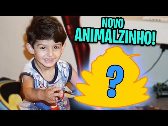 MEU NOVO ANIMAL DE ESTIMAÇÃO /Gaba\