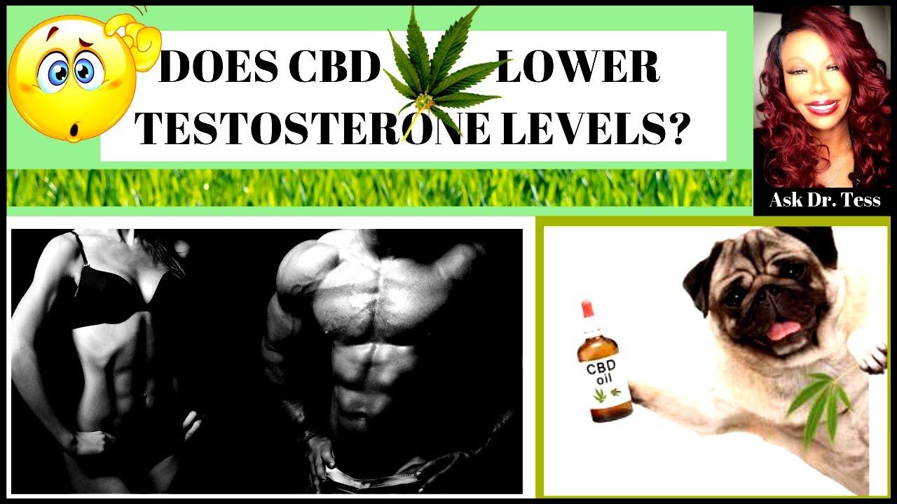 Тестостерон марихуана марихуана антибиотик
