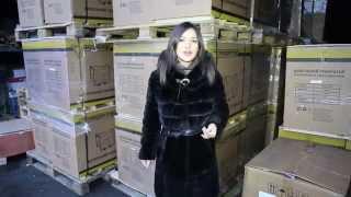 Генератор форте Киев купить  Дизельные генераторы Forte оптовая цена(, 2014-12-11T08:16:10.000Z)