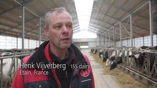 Lely L4C LED - Testimonial Henk Vijverberg - Lights for cows