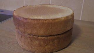 Два бисквита: классический и с разрыхлителем