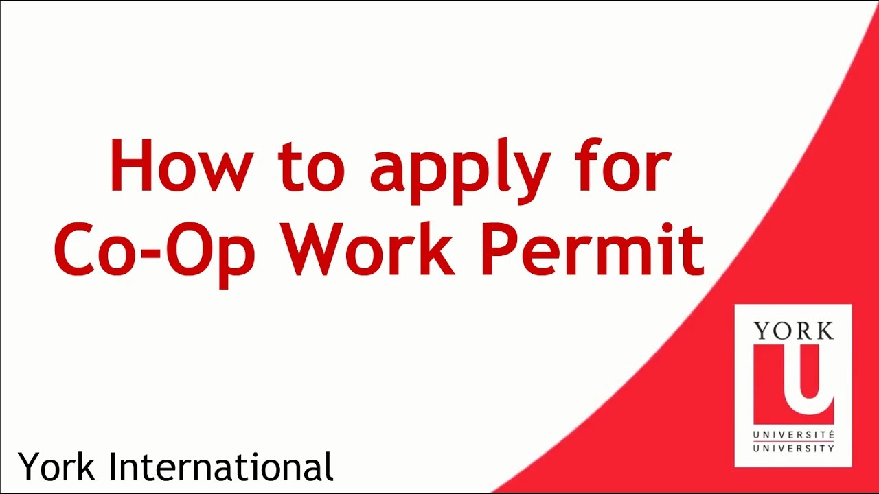 How to apply for co op work permit youtube how to apply for co op work permit falaconquin