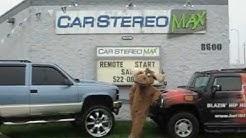 Car Stereo Max Dayton Ohio