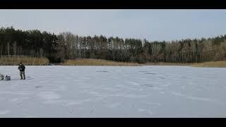 Приехали погулять на краснооскольское водохранилище Февраль 2021