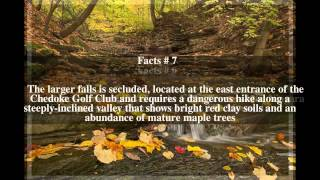 Chedoke Creek Top # 10 Facts