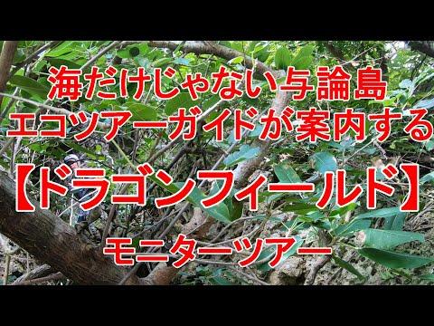 痴漢 電車 男 伝説 の ターゲット