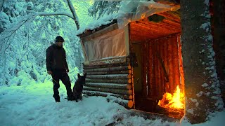 WINTER CAMPING THROUGH A BLIΖZARD AT THE FORT IN THE WOODS WITH A DOG. Can we Stay Dry and Warm?