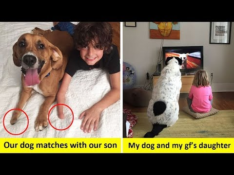 Wholesome Pictures That Show How Dogs Make Kids Life Better