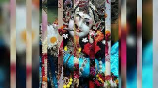 Mera ji krta h Shyam  ke bhjno me ko hi Mera ji krta h Shyam  ke bhjno me ko jauuuMera ji krta h Shy