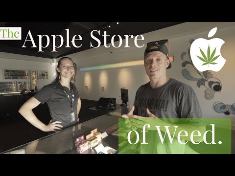 THE APPLE STORE OF WEED 🌳 Seattle, Washington | Vela Cannabis Recreational Marijuana Pot Shop Tour