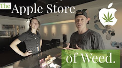 THE APPLE STORE OF WEED ? Seattle, Washington | Vela Cannabis Recreational Marijuana Pot Shop Tour