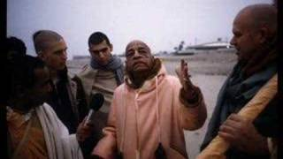 Repeat youtube video Prabhupada's Wisdom Series: Stop Being Bodily Conscious