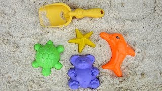 UT kids play with star, bear, turtle and fish sand molds
