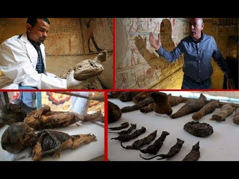 Mummified Birds, Mice And Cats Found In Ancient Egyptian Decorated Tomb