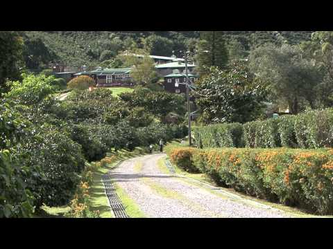 Video Turistico del Municipio de Boquete
