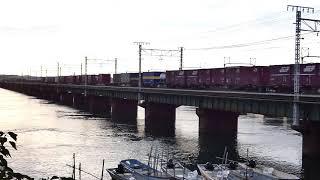 2019/09/18 JR貨物 夕方の貨物列車3本 浜名湖三番鉄橋を渡る
