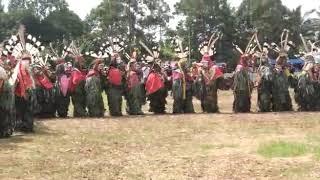 Hudoq  kewiet/kawit sub suku dayak Modang - Kutim