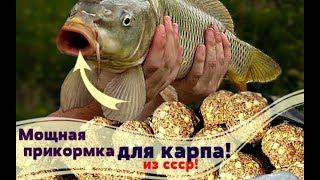 Мощная прикормка на карпа из СССР! Карп не устоит!